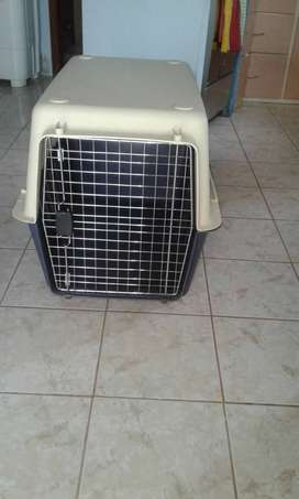 Transportador de perros