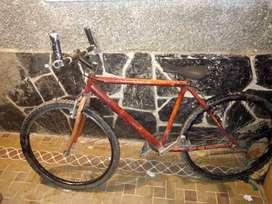 Bicicleta como se ve