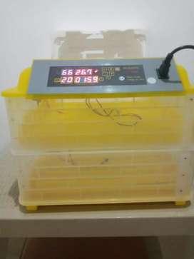 Incubadora de 112 huevos
