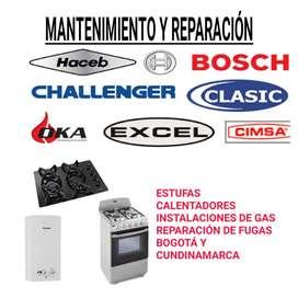 Calentadores Estufas mantenimiento reparación servicio técnico