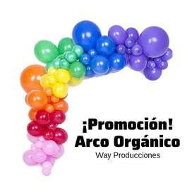 ¡GRAN PROMOCIÓN EN DECORACIONES! Semi Arco Orgánico  ¡Incluye Globos!