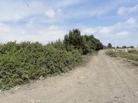 Venta Terreno de 500 a 1000 m2 X Aeropuerto Pisco