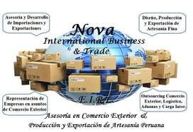 Consultor / Asesor de Comercio Internacional Importación y Exportación, Asesoría y Desarrollo Integral