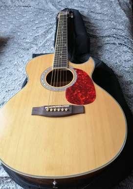 Guitarra en excelentes condiciones