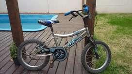 Bicicleta cromada niño Raleigh