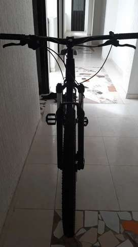 Vendo bicicleta venzo rin 29