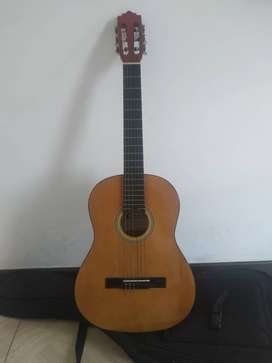 Guitarra Acústica Palmer PC13
