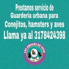 Guardería Conejos, Hamsters, Aves, Peces
