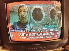 """televisor de 14"""" serie dorada"""