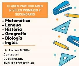 CLASES PARTICULARES NIVELES PRIMARIO Y SECUNDARIO.