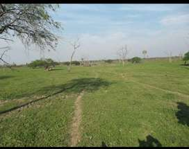Vendo urgente hermoso campo de 1000 ha. Sobre ruta 26.