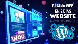 Paginas Web - Diseño Hosting Alojamiento