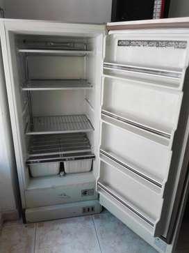 Congelador vertical blanco marca centrales