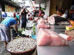 Busco fileteador, vendedor de pescado grande (picudo)