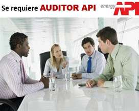 AUDITOR API