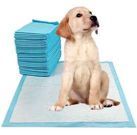 Pañales absorbentes para mascotas