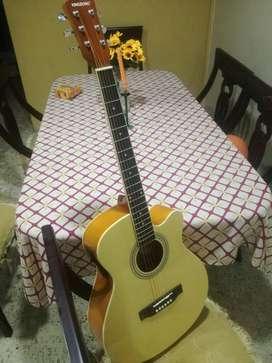 Guitarra Electroacustica Precio Fijo nuevecita