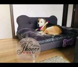 Base camas para mascotas