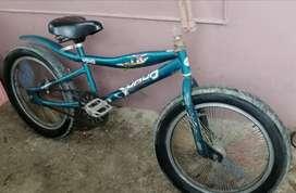Bicicleta. Aro 20