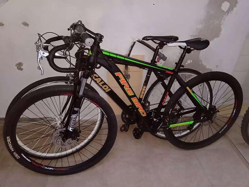Bicicleta Fire Bird 2020 rodado 29 0