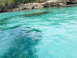 Terreno en Venta isla Barú- ciénaga de cholón