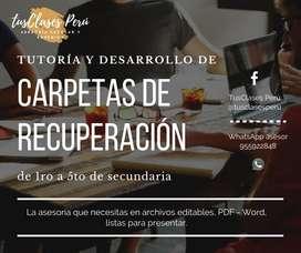 DESARROLLO CARPETAS DE RECUPERACION