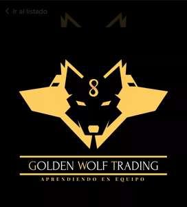 Curso Golden Wolf Trading