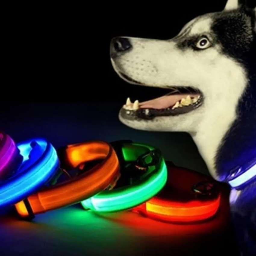 Collar luz led y reflectivo para perros 0