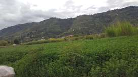 Terreno con vía privada en El Cabo La Estancia