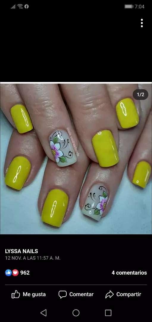 Curso teórico práctico de uñas tradicionales 0