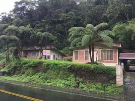 Venta de 2 casas + terreno