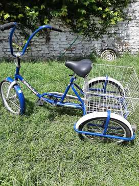 Bicicleta triciclo carga