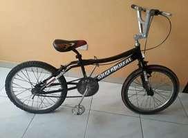 Se vende una Bicicleta Rin #20