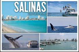 Resort Aquamira Malecon Salinas Departamento Familiar Hotel Colon Barcelo