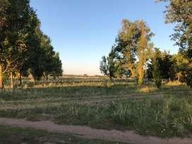 Vendo terreno listo para escriturar de 800 metros cuadrados