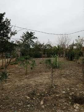Se vende terreno en santa rora parroquia  bella vista $7000 negociable