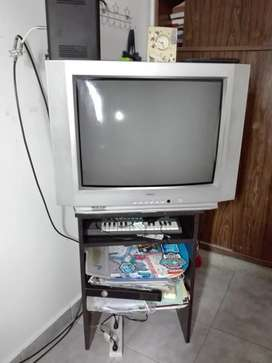 Televisor de 29