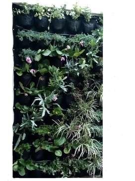 Jardín o panel vertical metro cuadrado