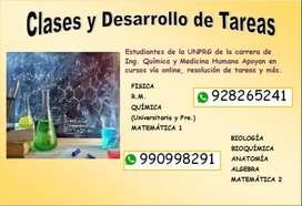DESARROLLO DE TAREAS Y CLASES