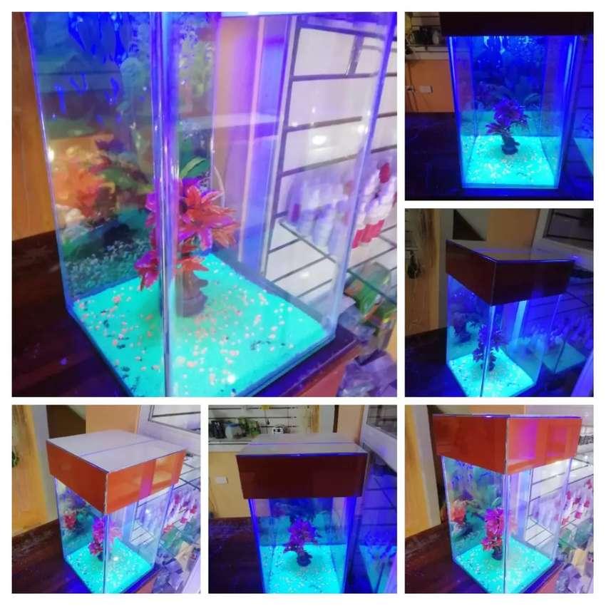 Acuarios a toda medida diferentes modelos desde $20 con oxigenador incluido y peces