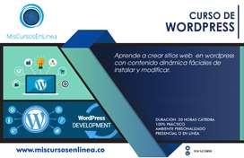 Curso de Wordpress en linea en cali
