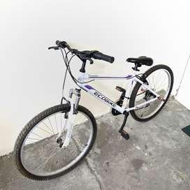 Bicicleta ecobike en venta