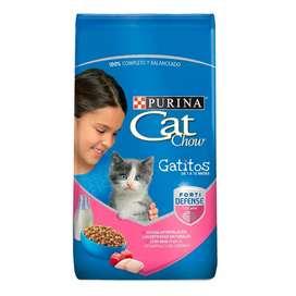Concentrado cat show gatitos