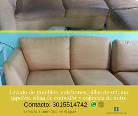 Lavado profesional de Muebles, colchones, sillas de oficina en Ibagué