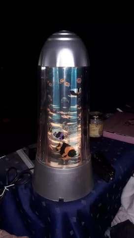 Lindas lamparas