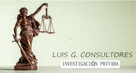 Luis G Consultores  Investigador Privado