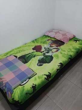 somier sencillo con su colchón + un cubre colchon