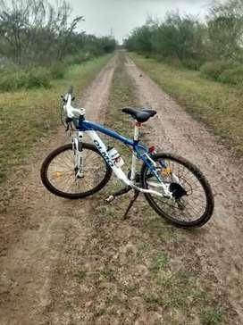 Bicicleta olmo alterra