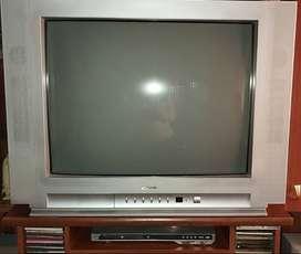 """Vendo TV 29"""" marca Admiral, con control remoto. Excelente estado"""