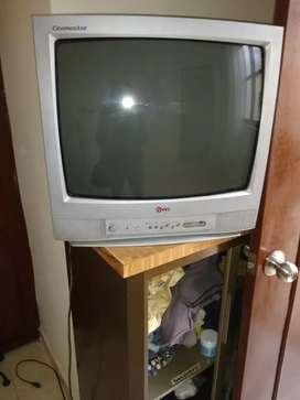 Se vende TV a color de 21'